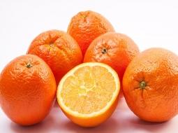 Portakal/Citrus sinensis