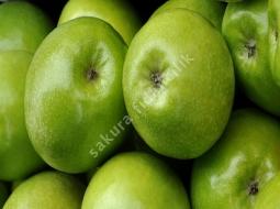 Yeşil Elma/Granny Smith